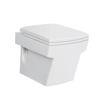 China Alibaba Standard Toilet Size Hidden Camera Ceramic Wall Hung Toilet Bowl