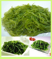 2018 crop Frozen seaweed wakame stem shredded
