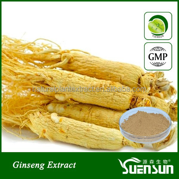 panax ginseng extract ginseng root extract hot sell ginseng powder