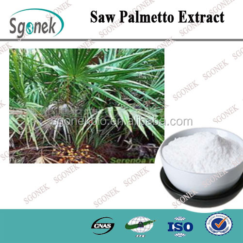 High Purity Natural Saw Palmetto Extract CAS NO.84604-15-9
