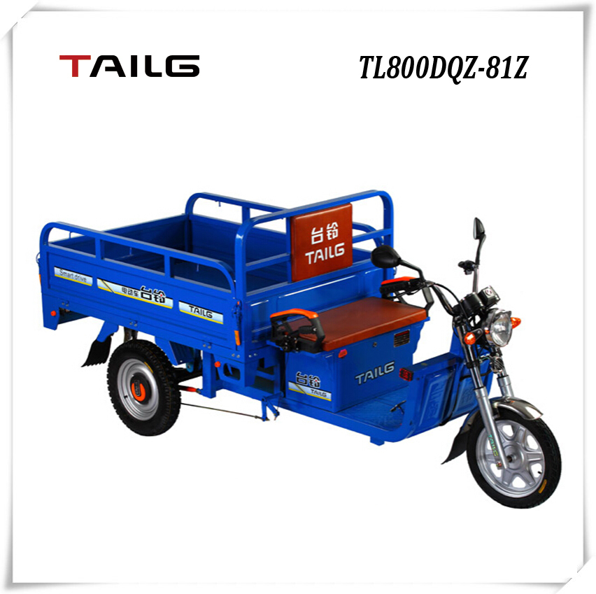 tailg steel frame 60V 20AH high quality loading electric tricycle for sales