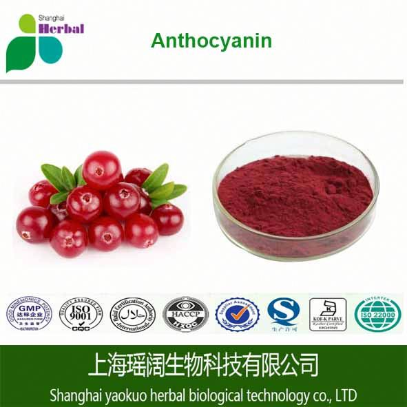 Blueberry extract proanthocyanidins, cranberry extract proanthocyanidins, grape seed extract 95% proanthocyanidins