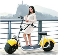 City Coco \ 2 wheel electric scooter motor