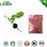 New arrival Natural pigment Black Radish Extract Black Radish Powder