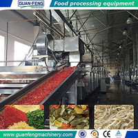 vegetables belt dryer fruit and vegetable drying machine