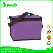 Insulated Promotional Cooler Bags - 6 Cans