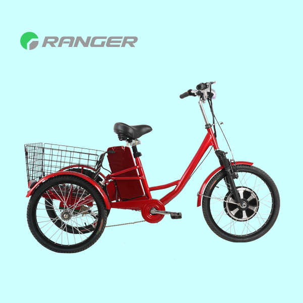 electric tricycle tuk tuk with 36V 12Ah lead acid battery CE
