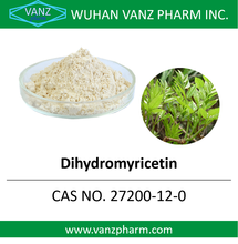 Natural Plant Extract Dihydromyricetin in Bulk