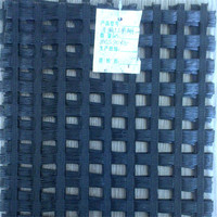 High elastic modulus of warp knitting polyester geogrid