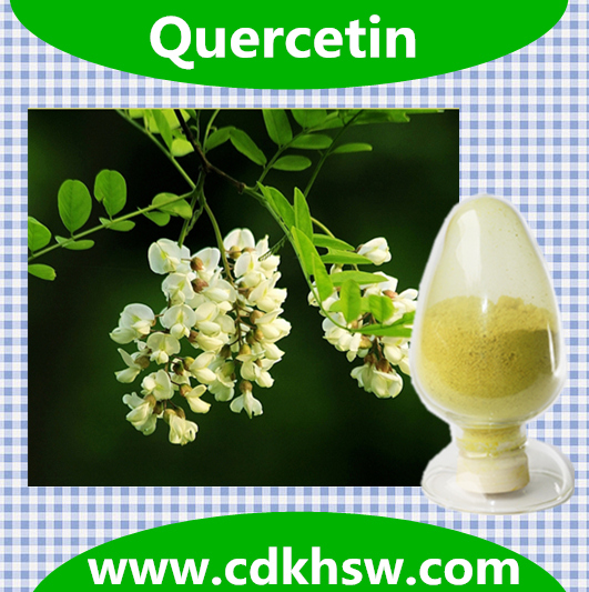 Professional Production Natural Pure for Standard Quercetin 117-39-5