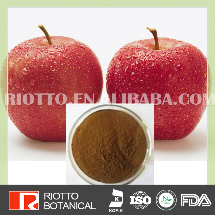 100% Water Soluble apple extract polyphenols 80%