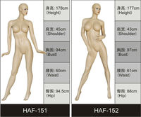 hot sale skin color sexy big breast mannequin