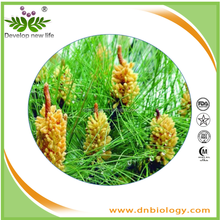 Natural Pine Needle Extract,Bee pollen extract/Pine pollen powder with good price