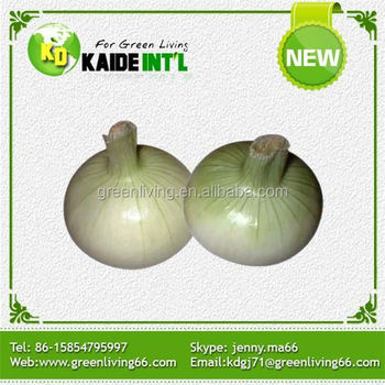 Export Onion In Bulk