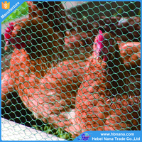 Anping galvanized hexagonal wire mesh/ chicken wire / PVC coated chicken fence