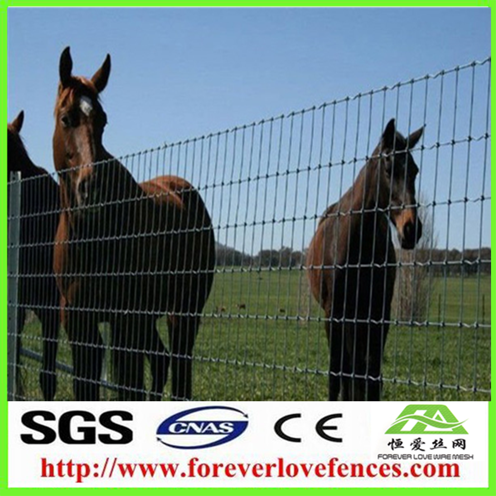 Hot Sale Low Cost Sheep And Horse Fence Livestock Fence