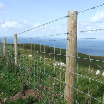 Fieldguard electric fencing sheep field fence wire