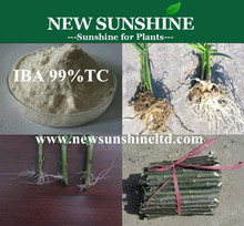 IBA 98%TC,Rooting hormone 3-Indolebutyric acid , Indole-3-butyric acid