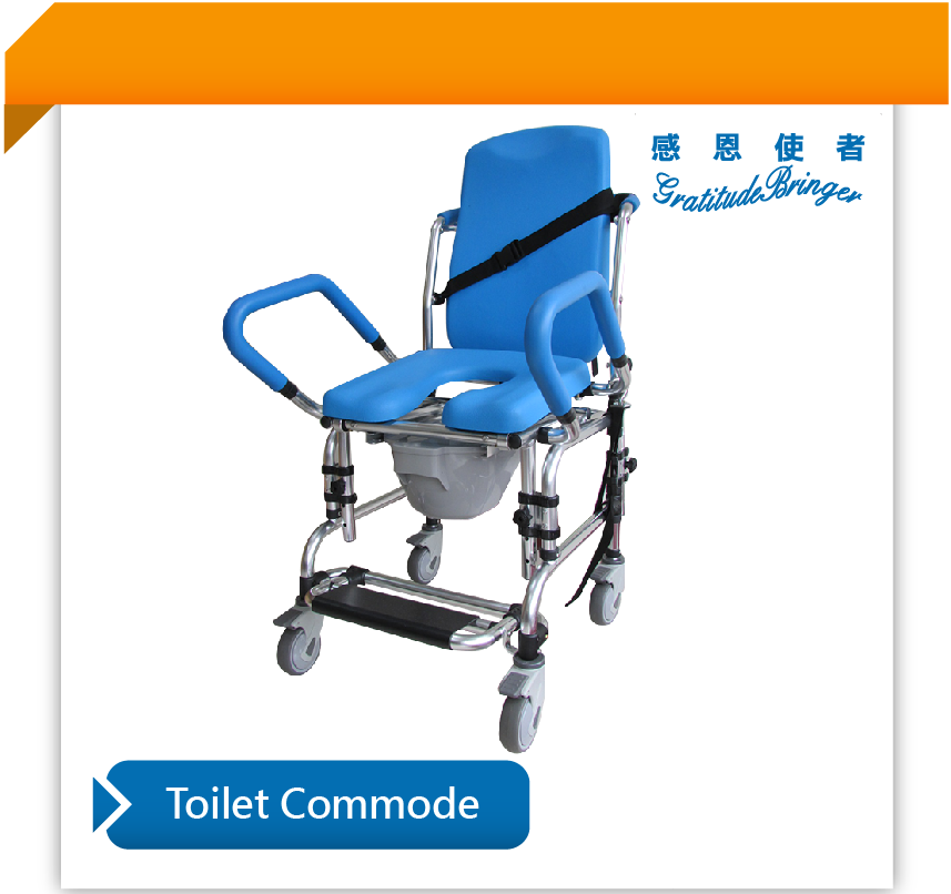 Movable Toilet Commode with Wheel Substitute Bath Chair