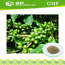 Fat Killer wholesale green coffee bean extract 98% Chlorogenic acid