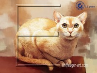Wholesale Hand Painted Original Art Canvas Animal Oil Painting Cat
