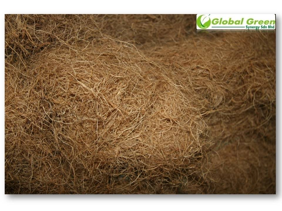 Palm Long Fiber / EFB Dried Fibre