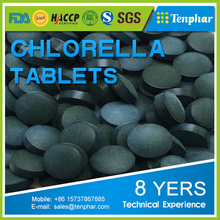 Natural Herbal Supplements Wholesale Algae Pellets Chlorella DHA Tablets
