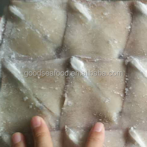 frozen searfood squid Chinese supplier Todarodes squid wing