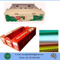 Plastic Corrugated Tomato Grapes Orange Packing Box