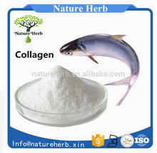 Low Price best way to drink collagen powder