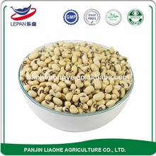 Hot Sellling Different Types Dried Pickled Dried White Cow Peas