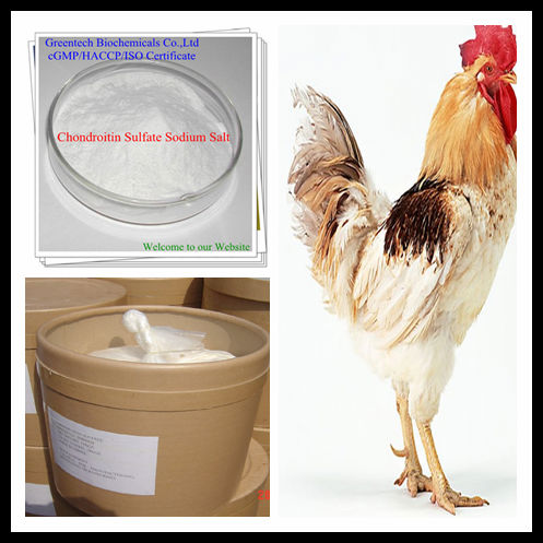 Hot Sell and Perfect Quality Chondroitin Sulphate Avian 90% CPC/HPLC