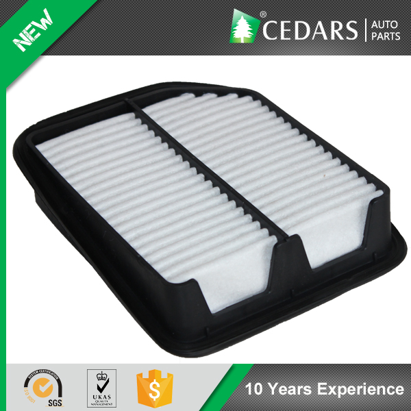 Quality Supplier with ISO 9001 Air Filter for Toyota with 12 Months Warranty
