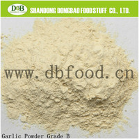 Agricultural Product Dehydrated Garlic, garlic powder (100-120)