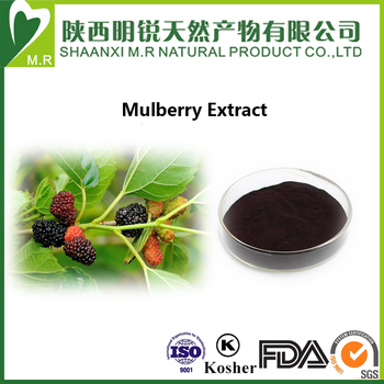 Mulberry Fruit Extract powder 25% anthocyanin