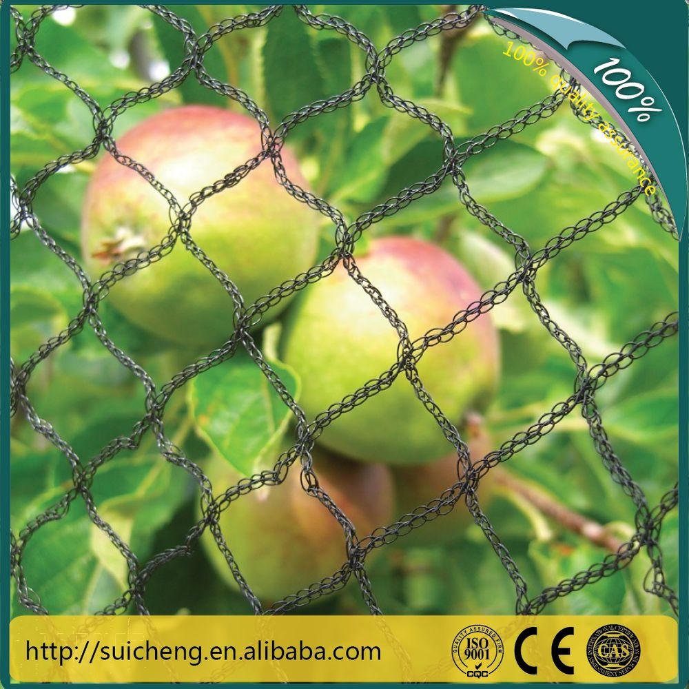 Guangzhou Agriculture Anti Bird Wire Mesh/ Garden Use Plastic Net For Plants