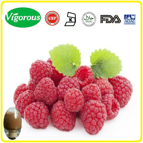 100% pure natural raspberry ketone extract powder