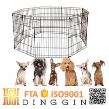 Wire mesh fencing dog kennel suppliers