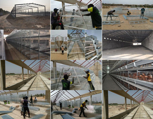 Prefab light steel structure chicken poultry house