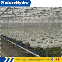 Advanced Hydroponics Supplies For Vegetables