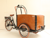 Holland pedicab Bakfiet family electric cargo tricycle closed box