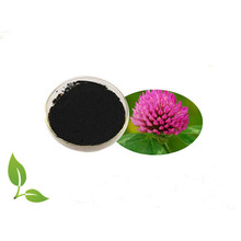 Red Clover P.E. / Red Clover Leaves Flowers Extract