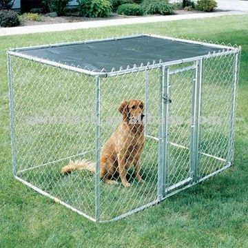 chain wire dog kennels