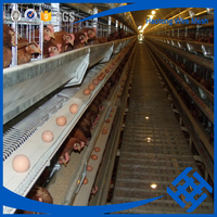Hot sale cages laying hens layer chicken battery cage