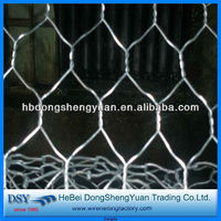 factory price!!! anping hot dipped galvanized hexagonal wire mesh for poultry farmhot sale!!!)
