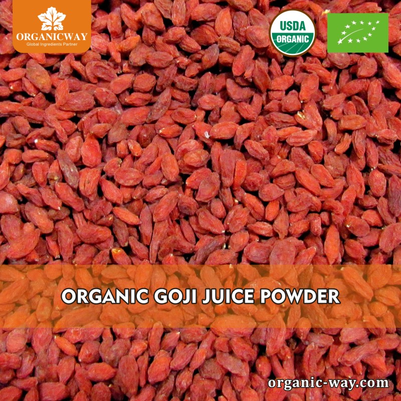 New product 2017 frozen goji berry