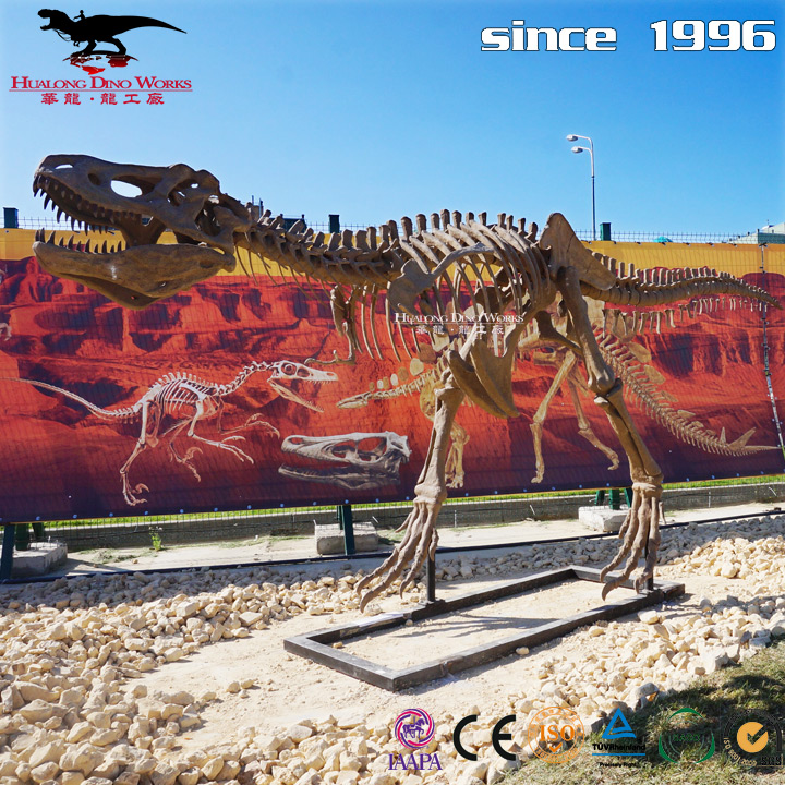 Scientific Museum Dinosaur Skeleton
