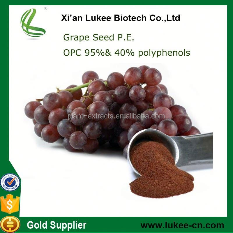 GMP factory supply Grape Seed / 98% HPLC Resveratrol extract Powder from china supplier