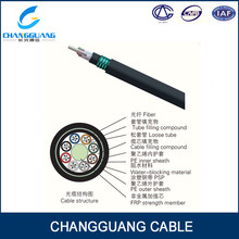 High Quality GYFTY53 Underground 24 Core Armored UG Cable
