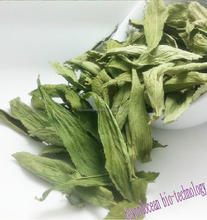 Dried Stevia leaves with whole sale price
